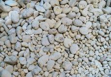 białe kamienie Obraz Stock