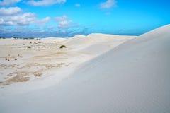 Białe lancelin piaska diuny, zachodnia australia 24 obraz royalty free