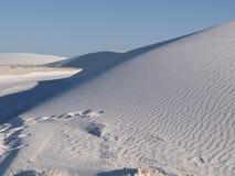 białe piaski Zdjęcie Royalty Free