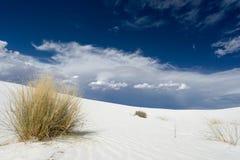 białe piaski Zdjęcia Royalty Free