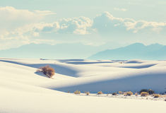 białe piaski Zdjęcie Stock