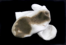 białe skarpetki Zdjęcie Stock