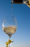 białe wino Obraz Stock
