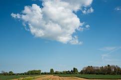 Białego cumulusu dramatyczne chmury Obrazy Stock