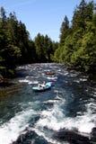 Białej wody Rzeczny flisactwo Fotografia Royalty Free