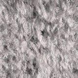 Biała futerkowa tekstura Fotografia Stock