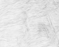 Biała futerkowa tekstura Obraz Royalty Free