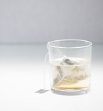 Biała herbata Fotografia Stock