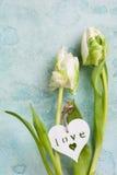 Biała i zielona tulipanowa para z drewnianym sercem Zdjęcie Royalty Free