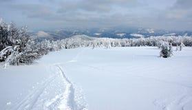 biała krajobrazowa zimy. Zdjęcia Royalty Free