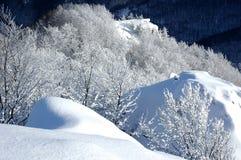 biała krajobrazowa zimy. Fotografia Royalty Free