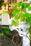 Biała skrzynka pocztowa Obraz Stock