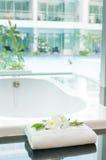 Biała wanna z basenu widokiem outside Obrazy Stock