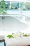 Biała wanna z basenu widokiem outside Obrazy Royalty Free