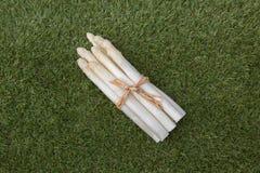 Biały asparagus Zdjęcie Royalty Free