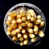 Biały asparagus na czerni Obraz Royalty Free