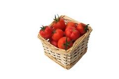 biały backgr pomidory odosobneni czerwoni dojrzali Fotografia Royalty Free