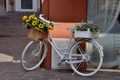 Biały bicykl Zdjęcia Stock