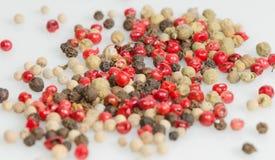 Biały, czarny, czerwony i zielony pieprz, Obraz Stock