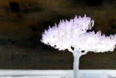 Biały drzewny abstrakcjonistyczny wizerunek Obraz Royalty Free
