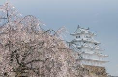 Biały egret kasztel Himeji Japan Fotografia Stock