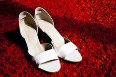 biały eleganccy buty fotografia stock