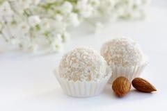 biały kokosowe trufle Fotografia Stock
