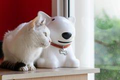 Bia?y kot i bia?y ceramiczny pies siedzimy blisko okno obrazy stock