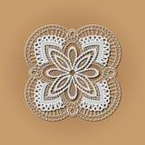 Biały laceon Fotografia Royalty Free