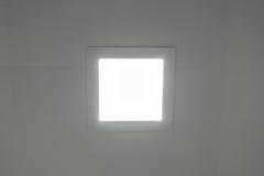 Biały lampion Zdjęcie Royalty Free