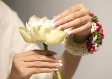 Biały lotosowy kwiat Zdjęcie Royalty Free