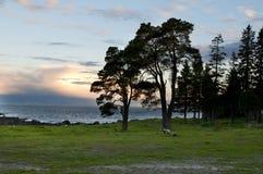 Biały Morze zdjęcie royalty free