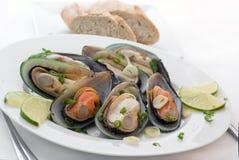biały mussels wino Obraz Stock
