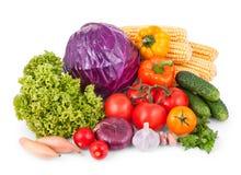biały odosobneni ustaleni warzywa Zdjęcie Royalty Free