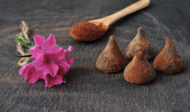 biały odosobnione czekolad trufle Cacao proszek czysty Obrazy Stock