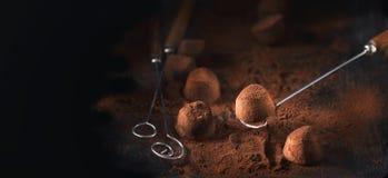 biały odosobnione czekolad trufle Domowej roboty truflowi czekoladowi cukierki z kakaowym proszkiem Obrazy Stock