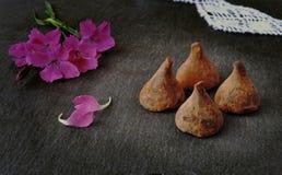biały odosobnione czekolad trufle Kwiaty i cukierki Zdjęcie Royalty Free