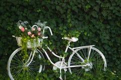 Biały rocznika rower Obraz Stock
