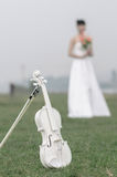 Biały skrzypce w trawie Obrazy Royalty Free