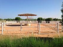 Biały sztachetowy ogrodzenie na trawa banku przeciw niebieskiemu niebu Zdjęcia Royalty Free