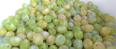 Biały winogrono Obrazy Stock