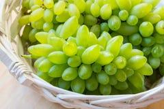 Biały winogrono - Pizzutello obrazy royalty free