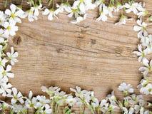 Białych kwiatów rama na brown drewnianym tle, Zdjęcia Stock