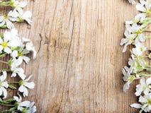 Białych kwiatów rama na brown drewnianym tle, Zdjęcia Royalty Free