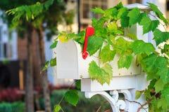 Biała skrzynka pocztowa Zdjęcia Stock