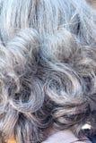 Biali Hairs z tyłu starszych osob zdjęcie stock