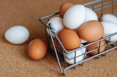 Biali i brown jajka w metalu kosza zakończeniu up Obrazy Stock
