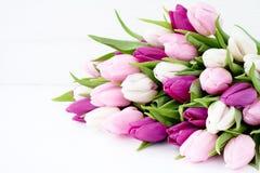 Biali i różowi tulipany na białym drewnianym stole Wakacyjny tło, Zdjęcia Royalty Free