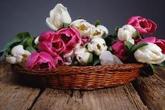 Biali i różowi tulipany w łozinowego kosza przodzie na drewnianym stole zdjęcie stock