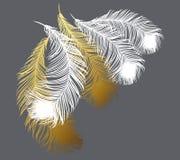 Biali i złociści stylizowani piórka na popielatym tle Obraz Stock